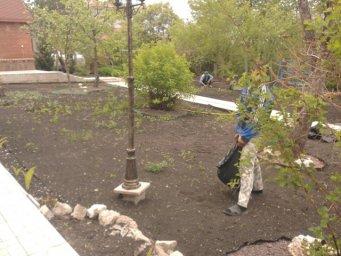 подготовка почвы,настил газона